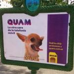 QUAM en Argentina – Un servicio móvil para los mas jóvenes
